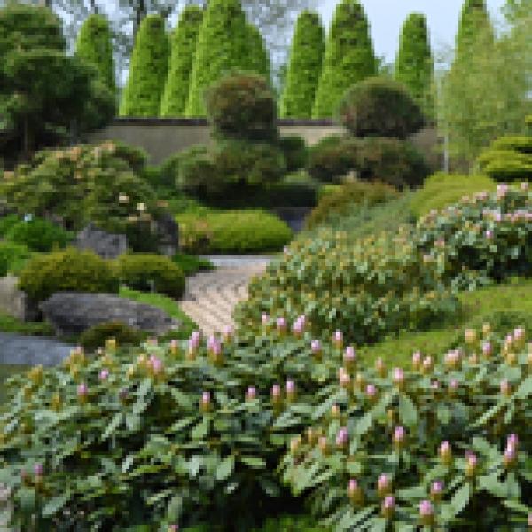 Hoe en wanneer de tuin bemesten plant grow - Hoe amenager tuin ...